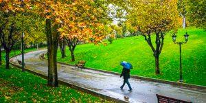 قدم زدن در روزهای بارانی پارک