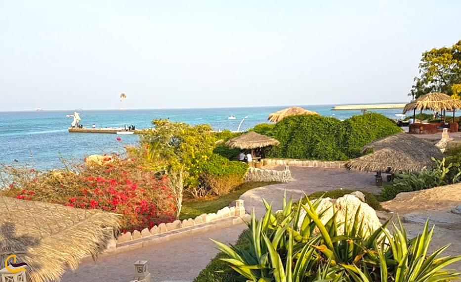 ساحل مرجان از نمایی دیگر