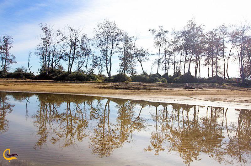 تصویری زیبا از تالاب میانکاله