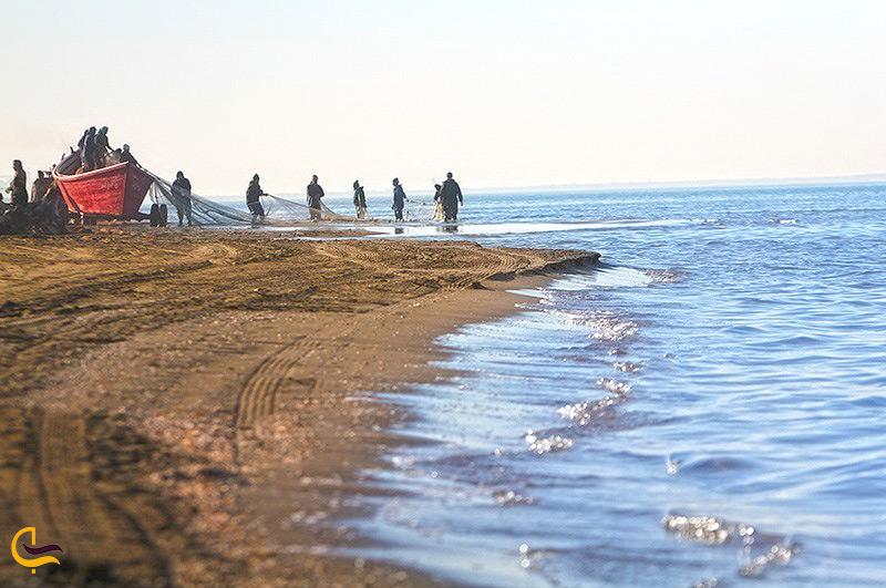 ساحل تالاب میانکاله
