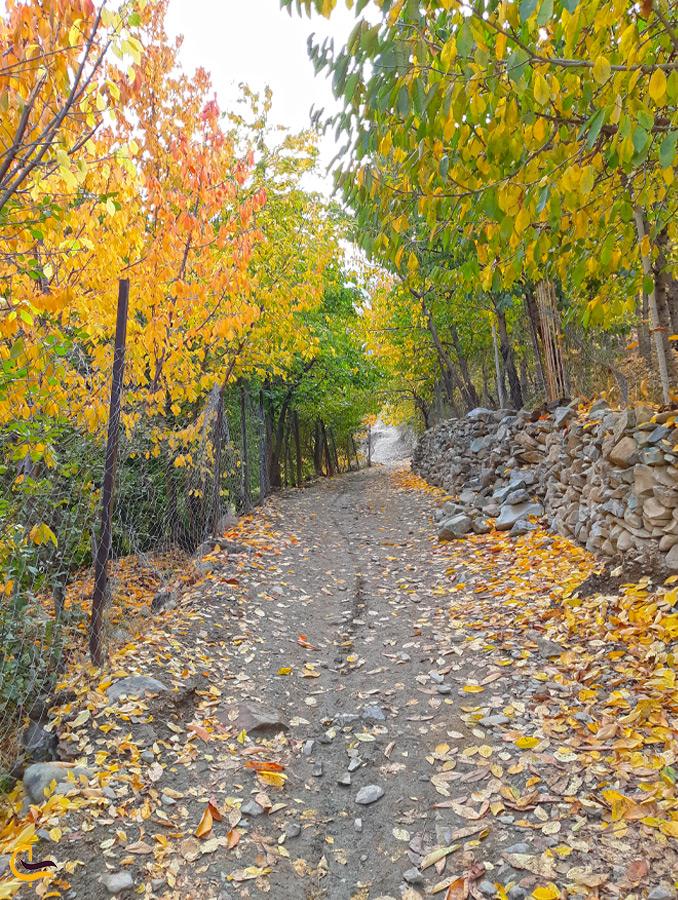 کوچه باغهای روستای آهار