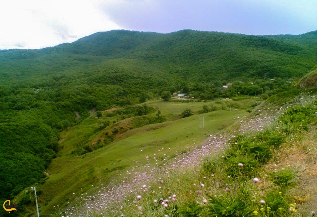 طبیعت اطراف روستای افجه