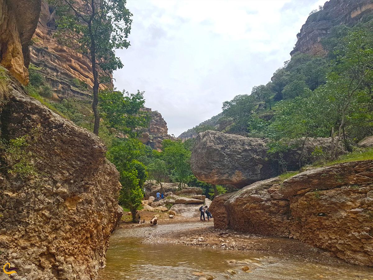پیادهروی در رودخانه های اطراف دره شیرز