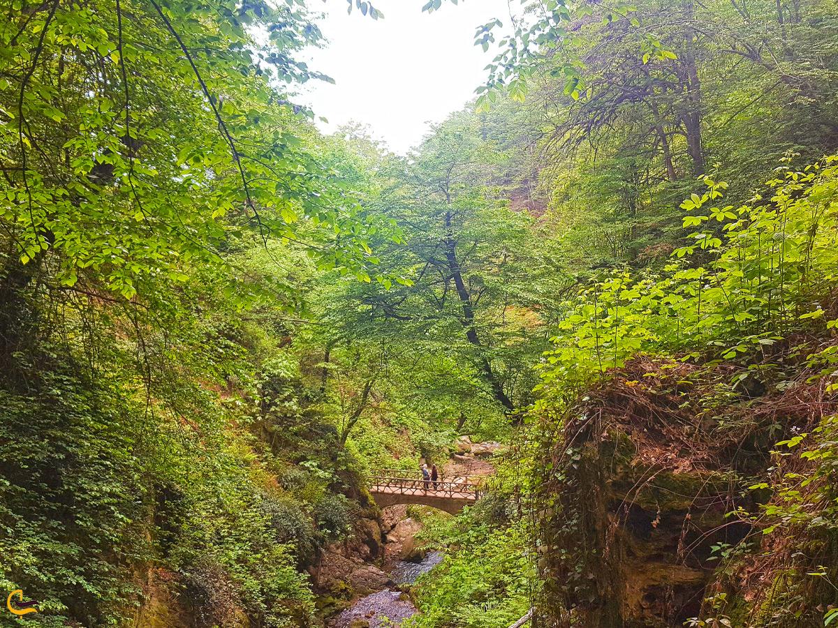 طبیعت اطراف آبشار کبودوال