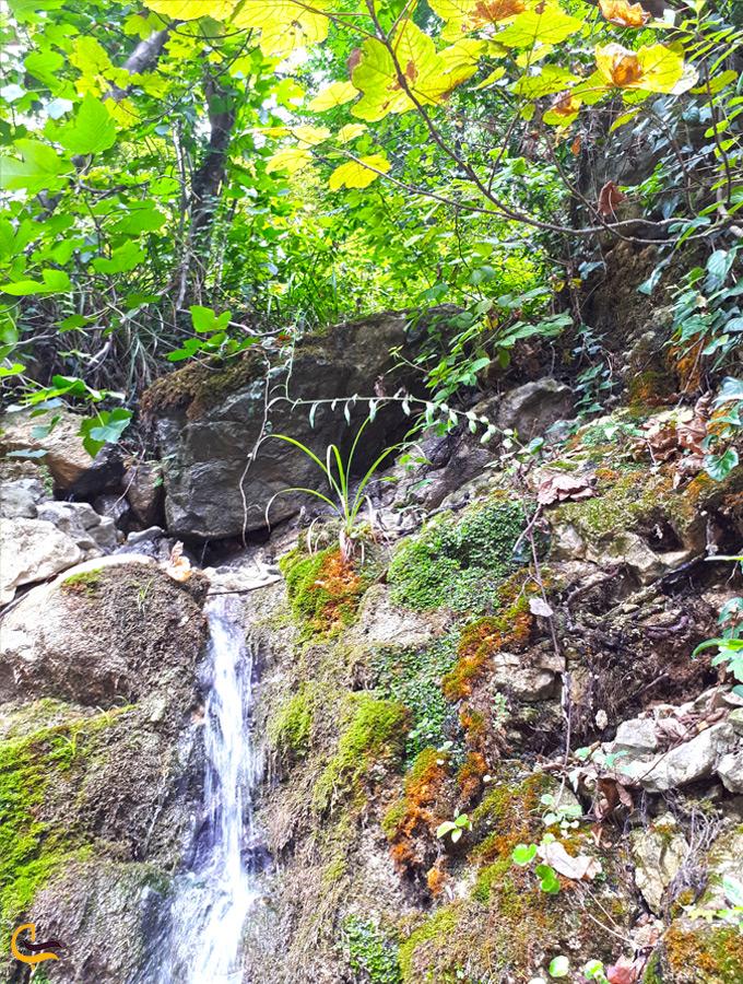 نمای پاییزی آبشار آب پری