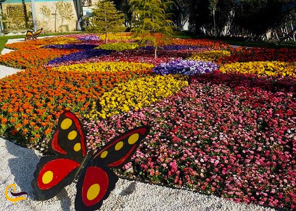 گل های رنگارنگ به همراه المان پروانه