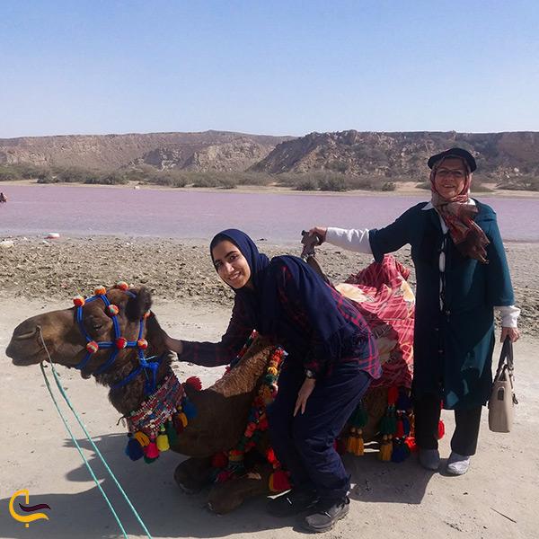 سفر خانوادگی به دریاچه صورتی لیپار و عکاسی با شتر در این قاب رویایی