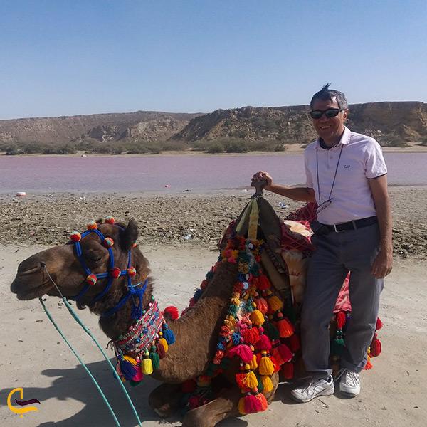 عکاسی و شتر سواری در کنار تالاب لیپار دریاچه صورتی رنگ ایران