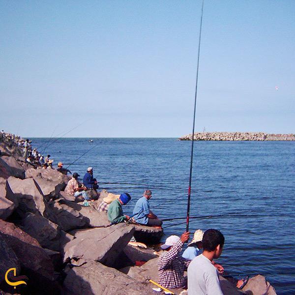 ماهیگیری گروهی در بندر انزلی
