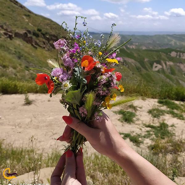 فصل بهار در بهشت خالد نبی