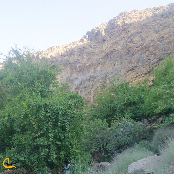 کوه پیمایی تفتان از مسیر روستای تمین