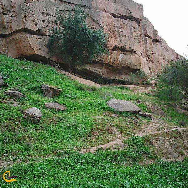 طبیعت زیبای باغ خان شوشتر