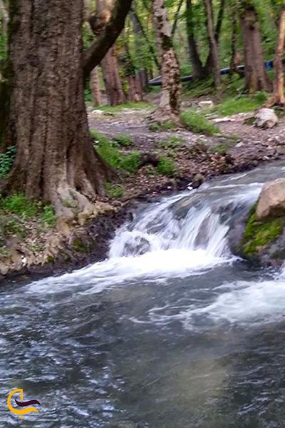 رودخانه چشمه خروشان زاو کلاله