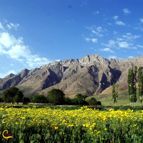 طبیعت زیبا و پوشش گیاهی خوانسار