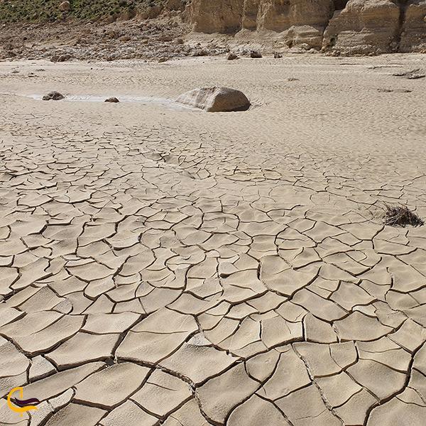 آب و هوای کویری و سرسبز در بوچیر هرمزگان