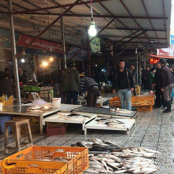 بازار روز ماهی در محمودآباد