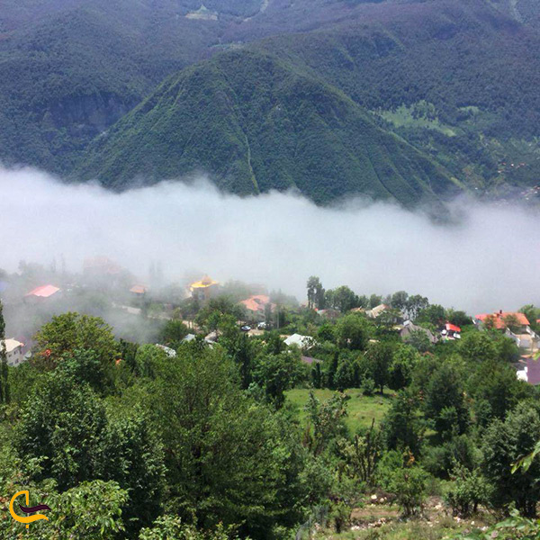سرسبزی طبیعت تنکابن مازندران