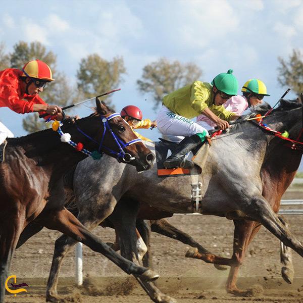 برگزاری مسابقات اسب سواری در مجتمع سوارکاری گنبد