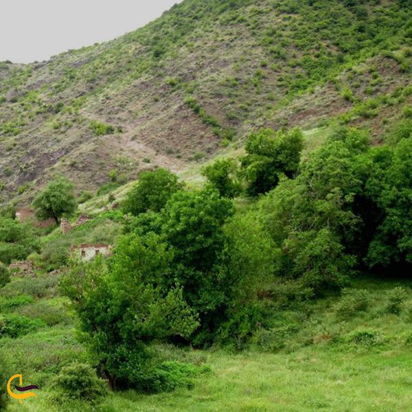تصویر منطقه حفاظت شده خیبوس و انجیل