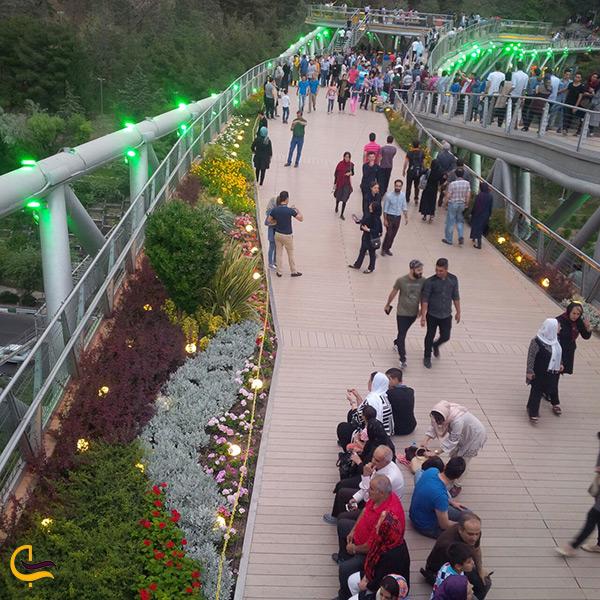 پیاده روی مردم بر روی پل طبیعت