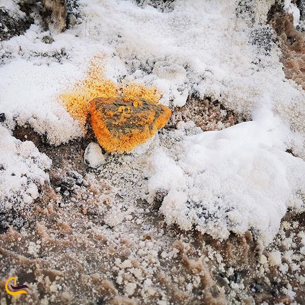 اشکال عجیب و زیبای سنگ نمک در جاشک