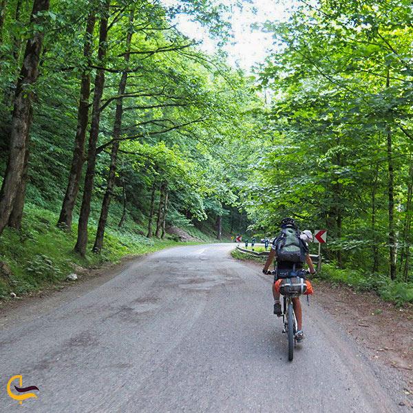 دوچرخه سواری در جنگل سی سنگان
