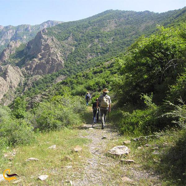 طبیعت روستای رودبارک