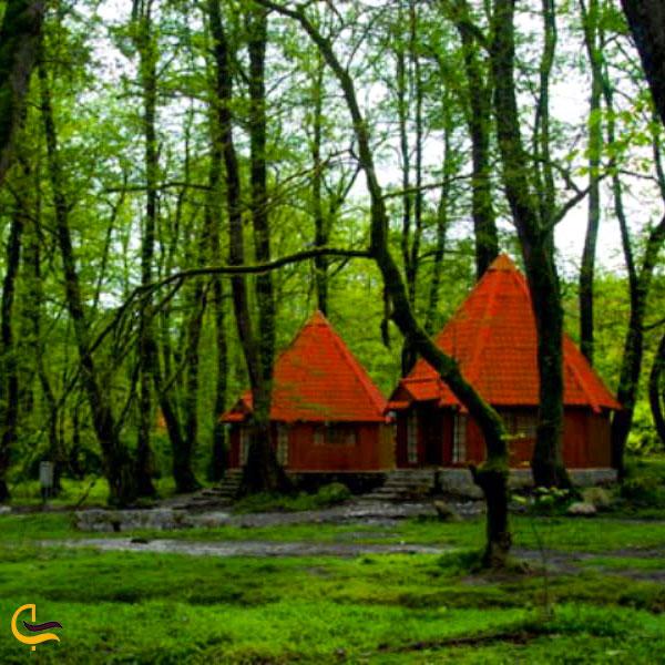 اقامت در جنگل سی سنگان