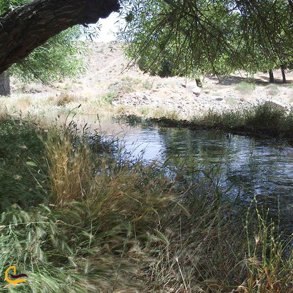 طبیعت زیبا یروستای پاریز سیرجان