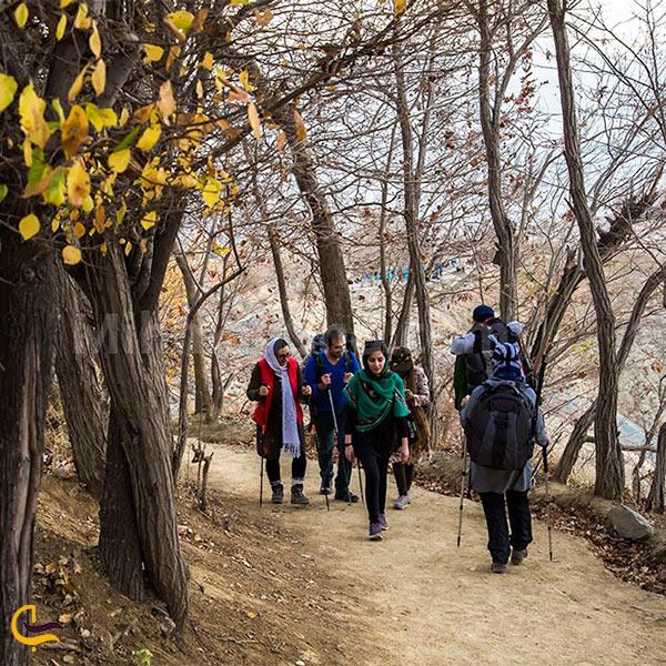 نمایی از مسیر کلک چال به قله توچال