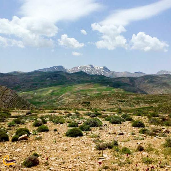 تصویری از طبیعت شاه جهان اسفراین