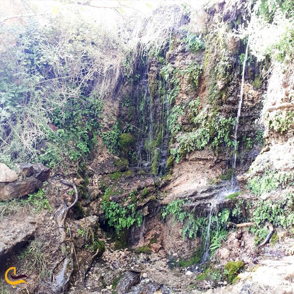 تصویری از چشمه قل قل در بین تنگه های سرسبز دامغان