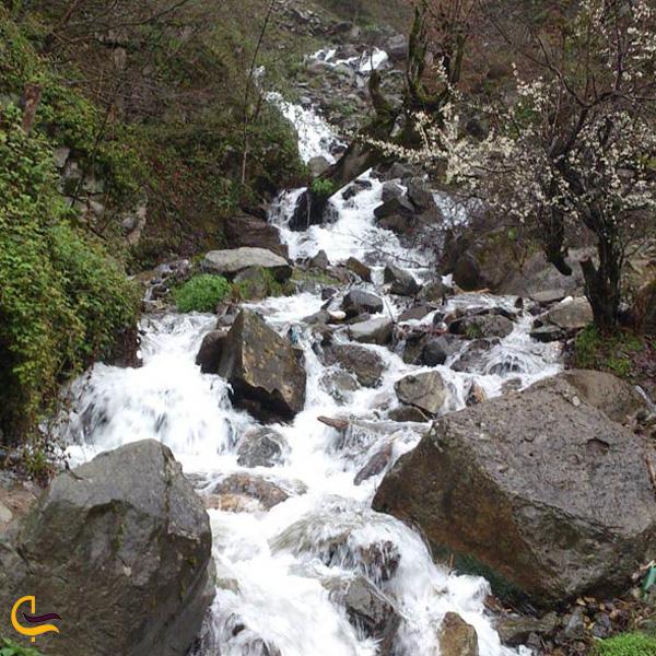تصویری از رودخانه زیبا فومن