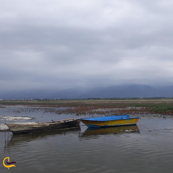 تصویری از خلیج گرگان