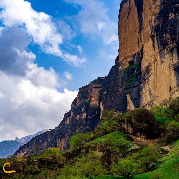 تصویری از طبیعت سرسبز بکر روستا صوفی احمد آباد دزفول