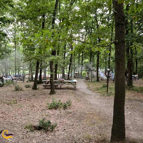 تصویری از پارک اورمانی استانبول