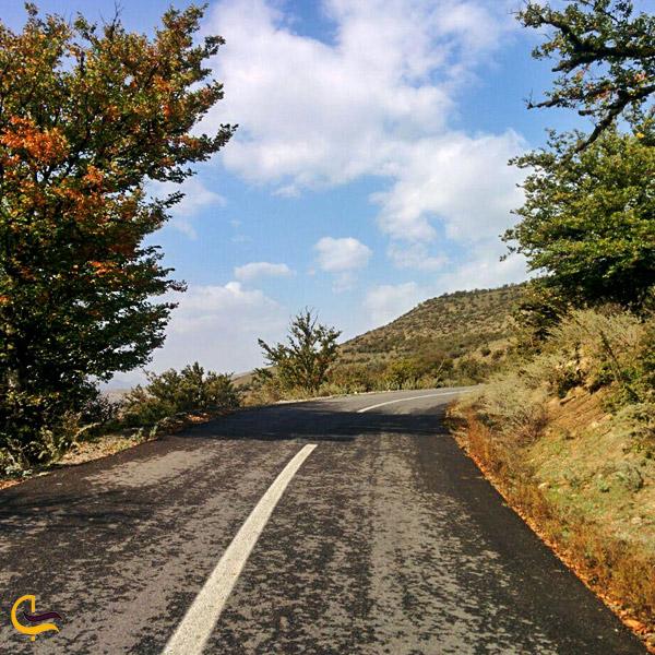 تصویری از جاده سرسبز المستان