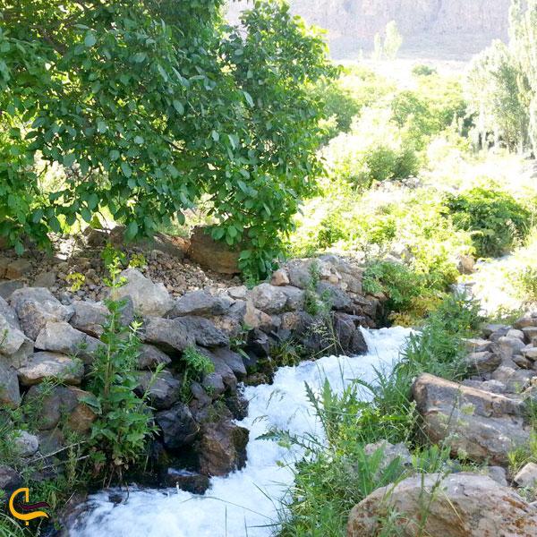تصویری از آب چشمه طبیعت سرسبز بروجرد