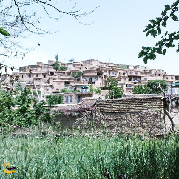 تصویری از طبیعت سرسبز روستا کوه سرخ کاشمر