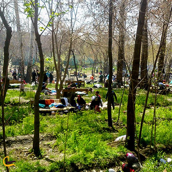 نمایی از پیکنیک خانوادگی در پارک وکیل آباد مشهد
