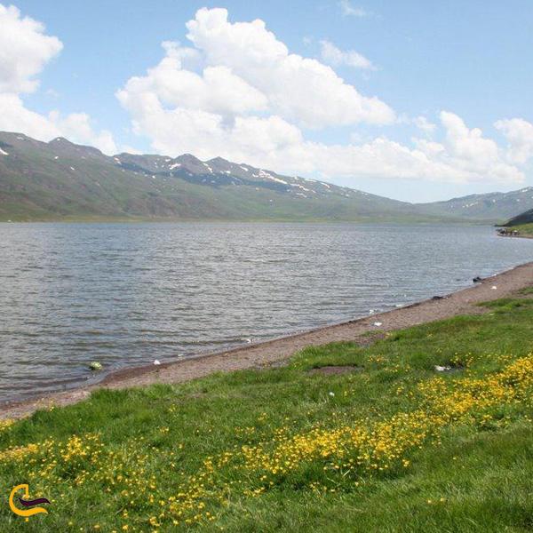 تصویری از طبیعت سرسبز و دریاچه نئور اردبیل