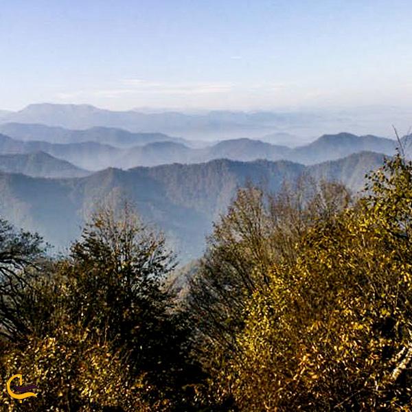 تصویری از درختان پاییزی منطقه حفاظت شده گشت رودخان