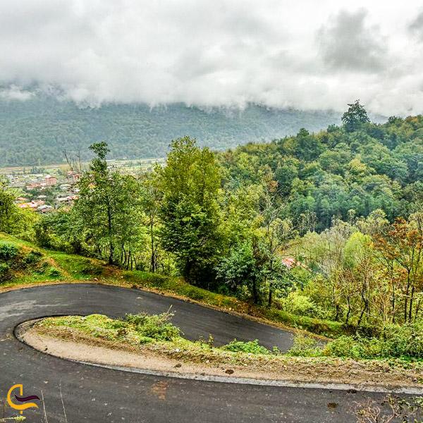 تصویری از جاده سرسبز پاییزی رزکه آمل