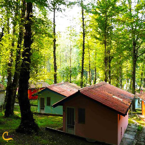 بازدید و استراحت در پارک جنگلی چالوس