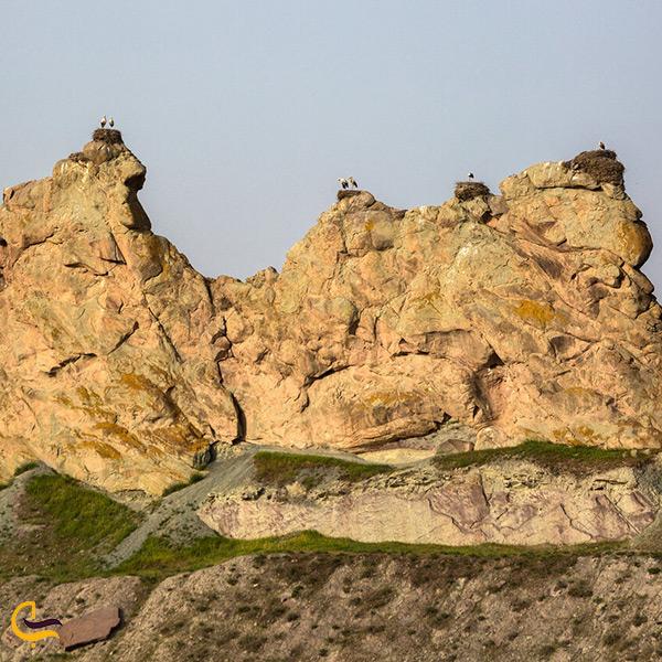 بازدید از قلعه لک لک های ماهنشان
