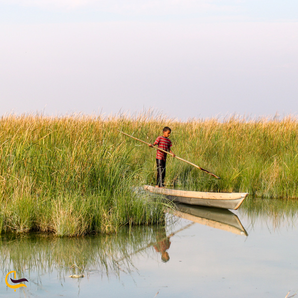 تصویری از قایق در تالاب ناصری خرمشهر