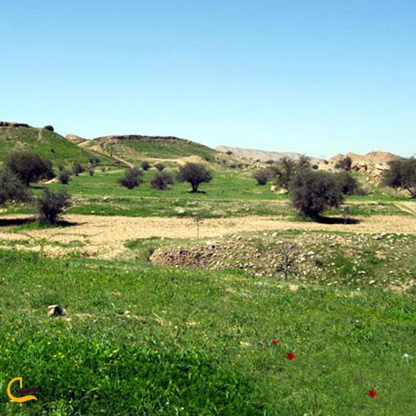 تصویری از دشت چم آسیاب