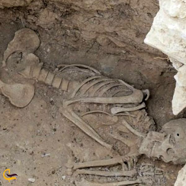 تصویری از اسکلت محوطه باستانی گیلوان خلخال