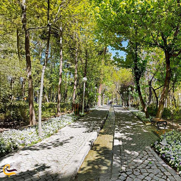 تصویری از فضای بی نطیر بهاری پارک وکیل آباد مشهد