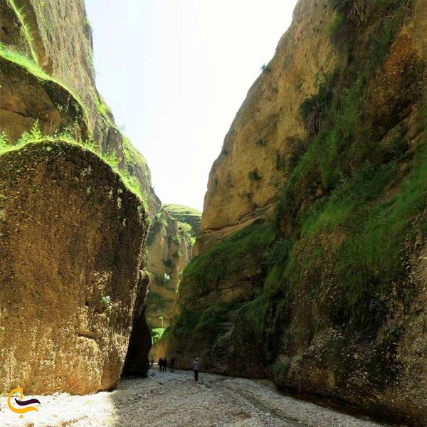 تصویری از سخره های سرسبز دره کول خرسان دزفول